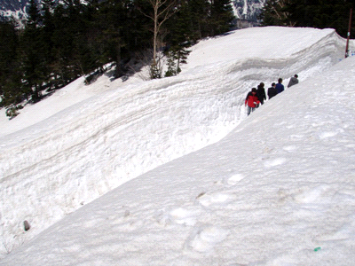 雪の千石平園地