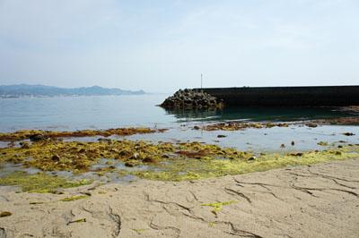 北条鹿島砂浜