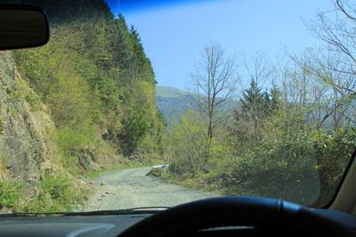 笹ヶ峰南側林道