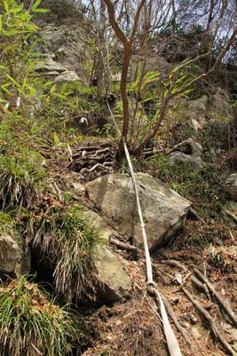 笹ヶ峰南側登山道