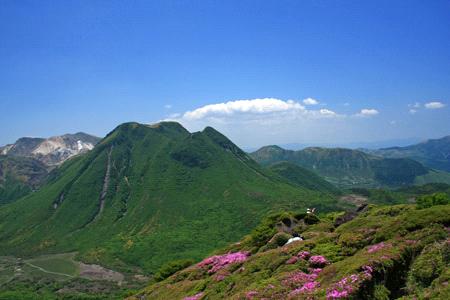 ミヤマキリシマ咲く平治岳頂上