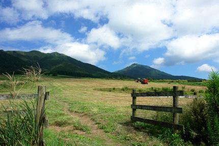 蒜山の牧場