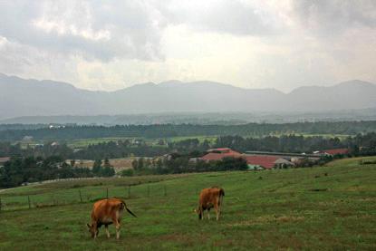 蒜山高原の牧場