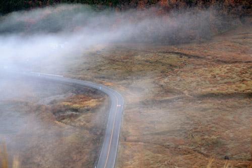 朝霧に包まれる狭霧台