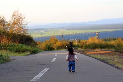 十勝岳望岳台の道路