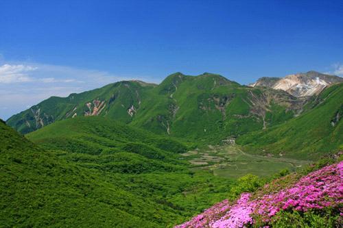 ミヤマキリシマと中岳