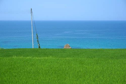 夏の日本海と棚田