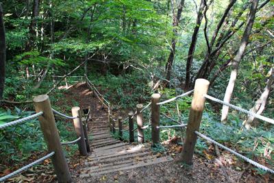 大山滝登山道