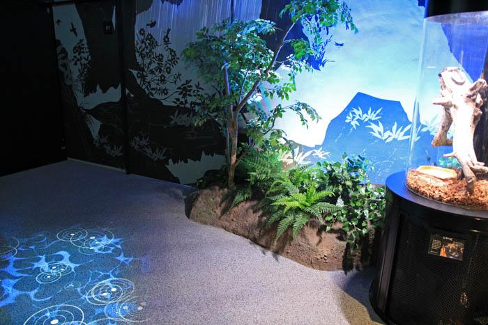 足摺海洋館源流の森