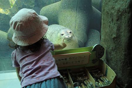 旭山動物園あざらし館