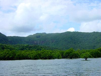 西表島ヒナイ川