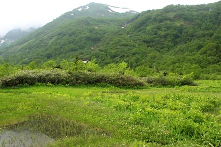 栂池自然園と白馬乗鞍岳