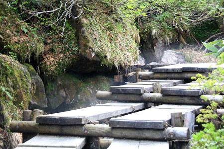 栂池自然園風穴