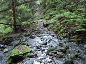 東赤石岳登山の川