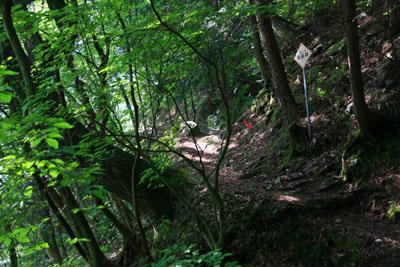 東赤石岳登山道