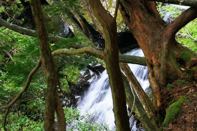 東赤石岳の川