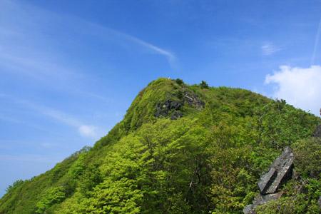 新緑の西赤石山