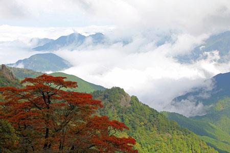 紅葉の石鎚山と雲海