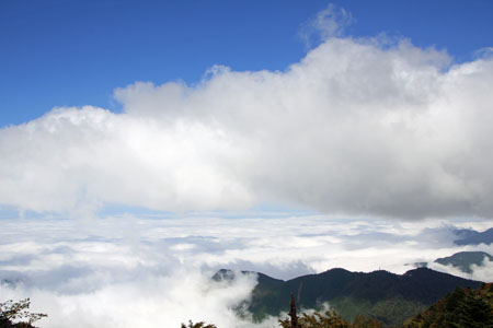 石鎚山から見る雲海