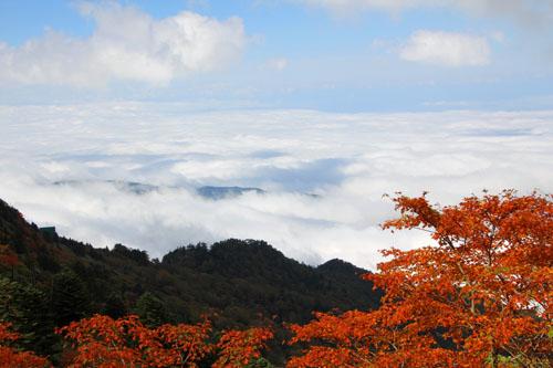 石鎚山から見下ろす紅葉と雲海