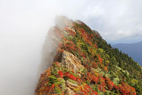 紅葉の石鎚山天狗岳