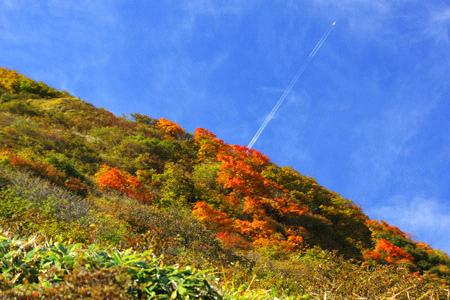 紅葉の伊予富士
