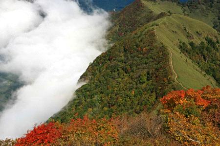 紅葉と雲海の伊予富士