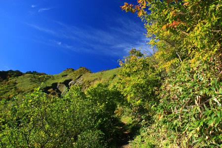 秋の伊予富士登山