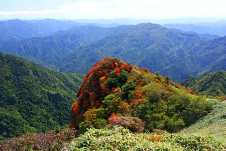 伊予富士の紅葉