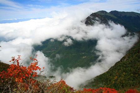 紅葉と雲海の寒風山