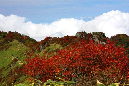 紅葉の伊予富士登山