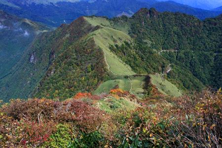伊予富士の登り