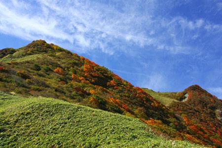 秋の伊予富士