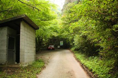 白糸の滝へ向かう林道