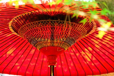 栗林公園の和傘