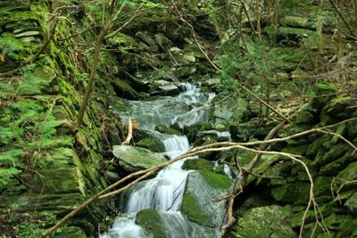 別子銅山跡の川