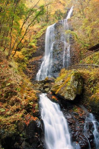 紅葉の白猪の滝