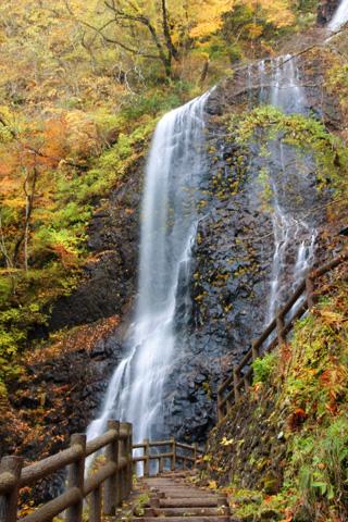 白猪の滝の紅葉