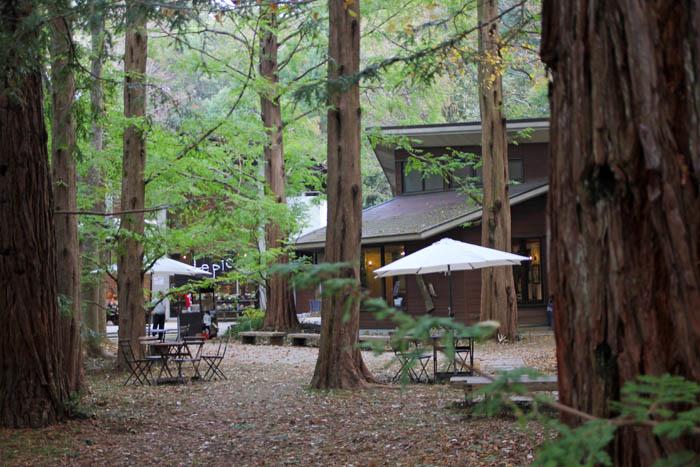 森のカフェル・ピック