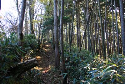 陣ヶ森への登山道