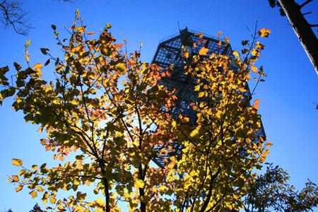 秋の陣ヶ森頂上