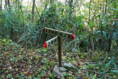 上林峠への登山道