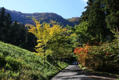 秋の上林森林公園