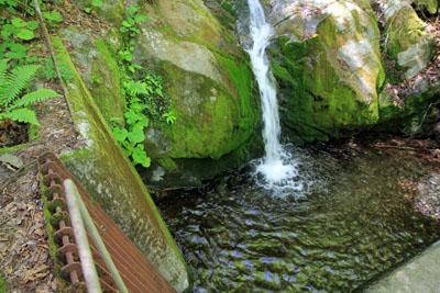 寛永谷の取水口