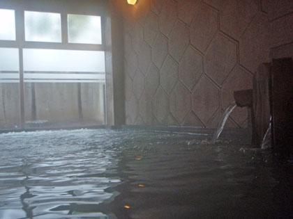 権現温泉内湯