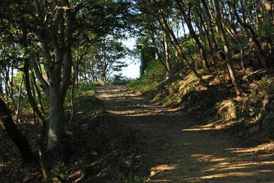 飯野山登山道