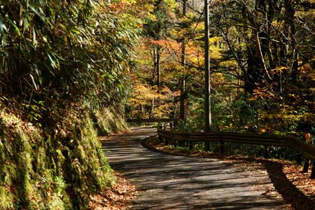 小田深山渓谷への道