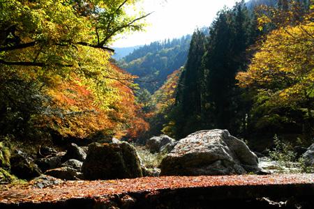 紅葉の小田深山渓谷