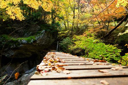 紅葉の小田深山渓谷散策