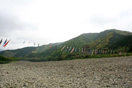 四万十川鯉のぼりの川渡し